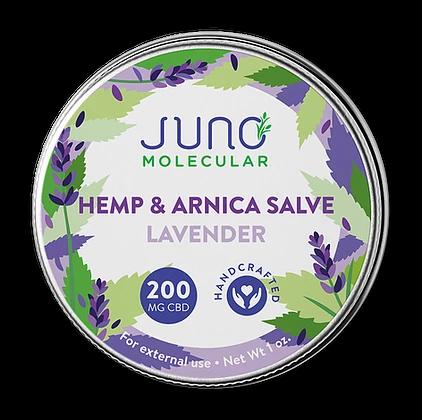 1OZ CBD and Arnica Salve (200 mg CBD)