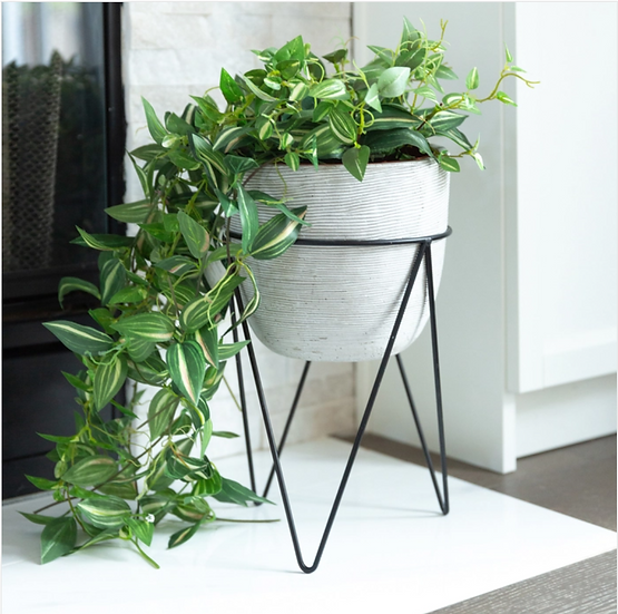 White Cement Planter with Black Iron Stand.