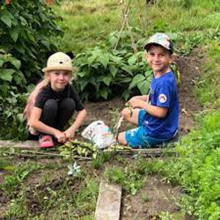 Llandudoch Allotments Open Day St. Dogmaels Diwrnod Agored