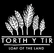 torth.PNG