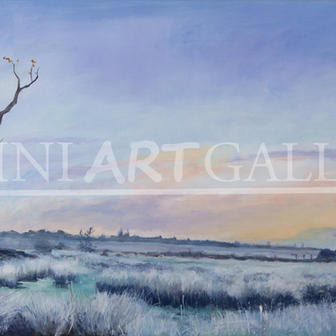 Frosty Morning - Carlton Marshes