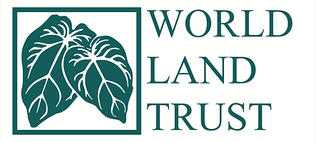 WLT_logo_png.png