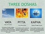 Three Doshas Vata Pitta Kapha