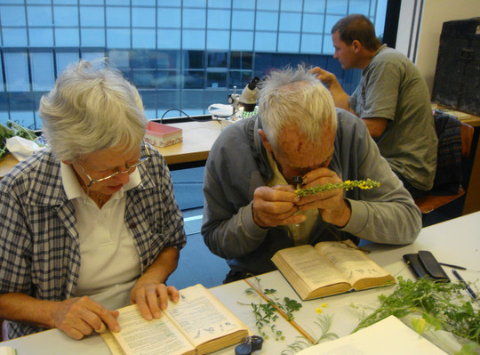 Wissbegierige Pflanzenfreunde