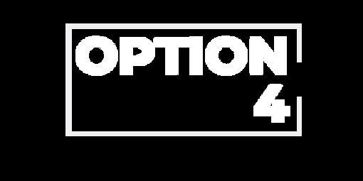 OPTION 4.png