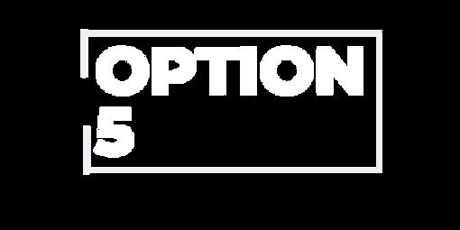 OPTION 5.png