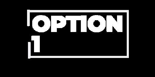 OPTION 1.png