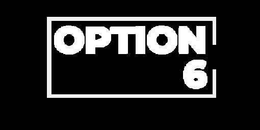 OPTION 6.png