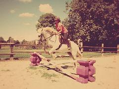 Promenade à cheval en Camargue, stages et cours d'équitation
