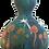 Thumbnail: Mushrooms