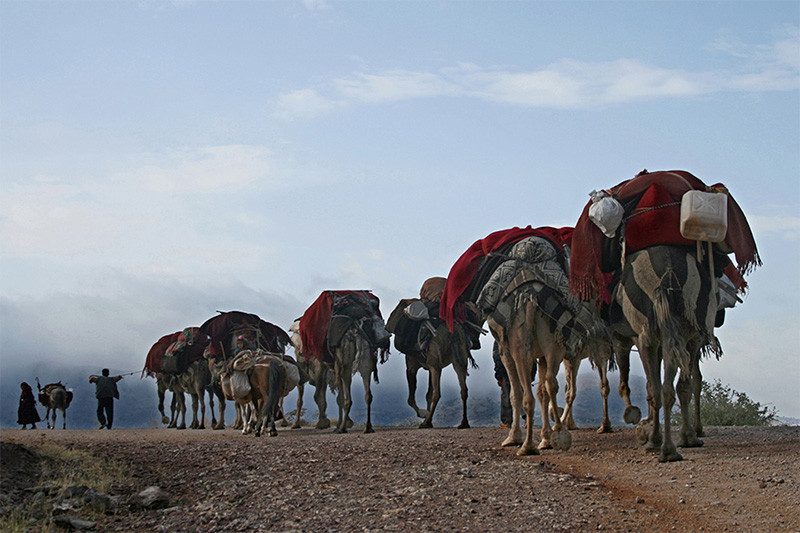 A nomadic tribe on the seasonal move