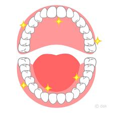 『歯』が教える、食事バランス!
