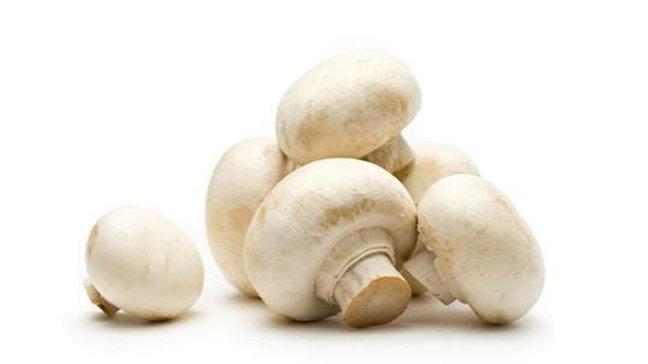WhiteButton Mushroom