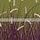 Thumbnail: Wavy Grass - Purple