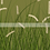 Thumbnail: Wavy Grass - Green