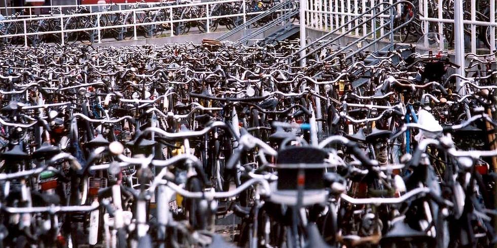 MMN Bike Maintenance and Biking Trails in the NL