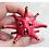 Thumbnail: Corona Virus!