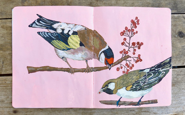 Birds with Berries. Page from my sketchbook