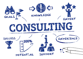 Tina Consulting Company