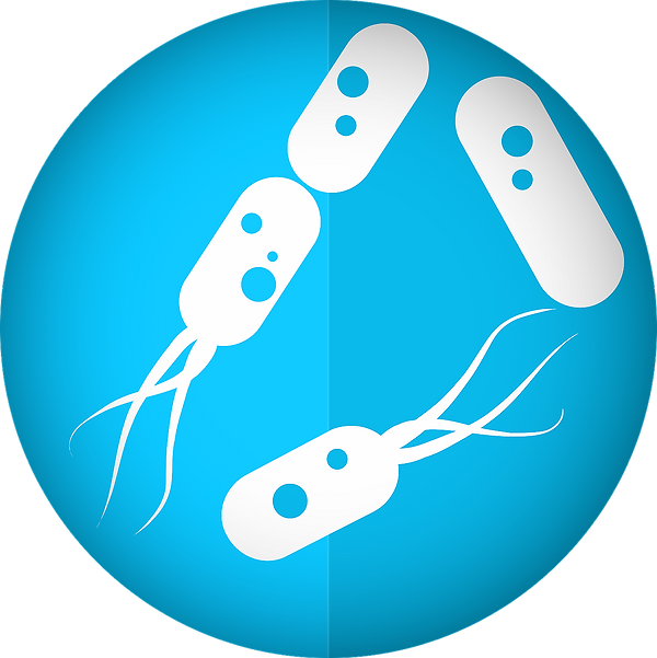 bacteria-icon-2316230_1280_edited.png