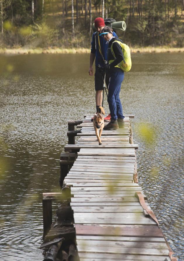 Family Hike @ Asveja Regional Park