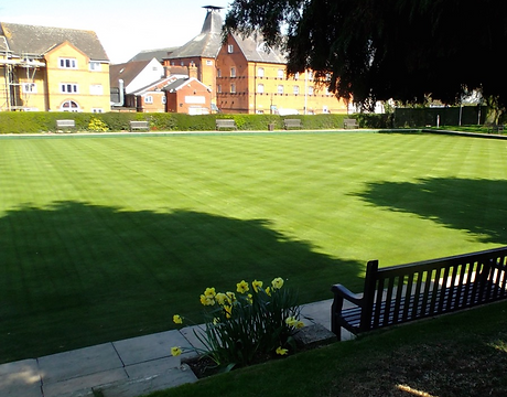 Havers Park Green.png
