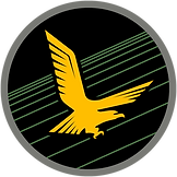 IAF_Squadron_140_from_2016.png