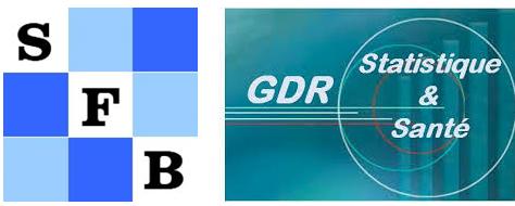 Le programme définitif des Journées GDR/SFB est disponible !