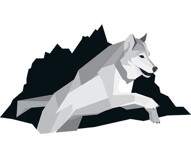UPDATED QCLS Logo (1) copy.png