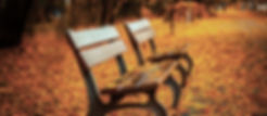 Bench auf Herbstlaub