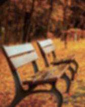 Haar en huid in november, De holistischeharenkalender