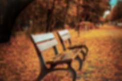 Banco en las hojas de otoño