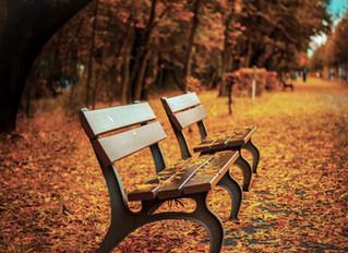 L'automne ou le printemps de l'hiver.