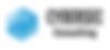 Cybersec logo.PNG