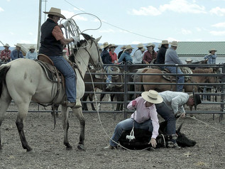 Helmville Rodeo ready to burst from the gates this weekend