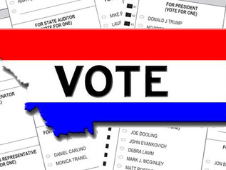 Official 2020 General Election Sample Ballot for Granite County