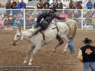 Helmville Rodeo ready to bust from the gates this weekend.