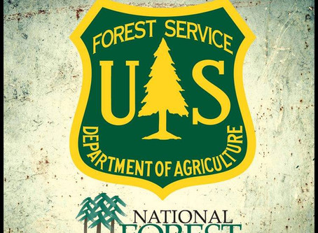 Beaverhead-Deerlodge National Forest Temporarily Closes Developed Recreation Sites