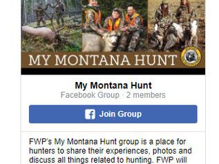 FWP getting ready for Deer, Elk Permit applications