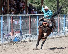 0_Saddle_Bronc_IMG_1524.jpg