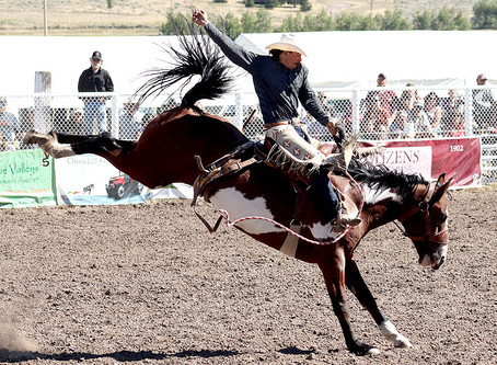 55th Annual Helmville Rodeo: Saddle Bronc Calcutta