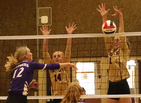 Lady Prospectors tame Panthers in home opener