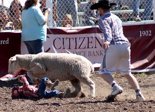 55th Annual Helmville Rodeo: Mutton Busting