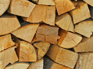 No joke, new Firewood Permits available April 1