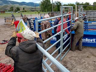 Legion, Kiwanis install new chutes ahead of 78th annual rodeo