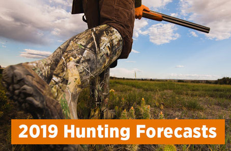 Are you ready for hunting season?