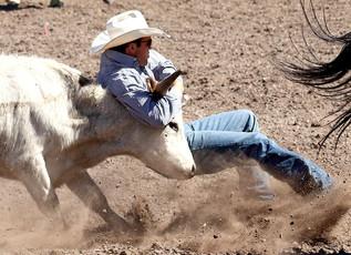 55th Annual Helmville Rodeo: Steer Wrestling & Tie Down