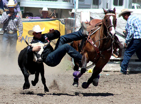 Drummond Kiwanis cancel 2020 rodeo, moves forward with scholarships, park