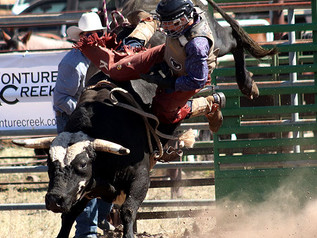 55th Annual Helmville Rodeo: Bull Riding & Mini Bulls