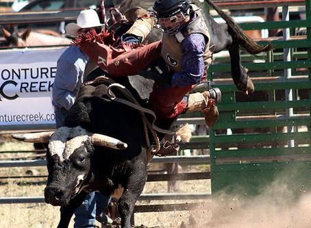 55th Annual Helmville Rodeo: Bull Riding & Mini Bulls
